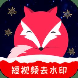 飞狐视频下载器app