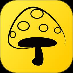 蘑菇丁软件