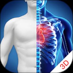 3d人体解剖图谱电子版