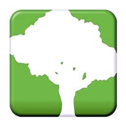 speedtree软件官方版