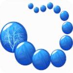 my family tree家谱族谱制作软件