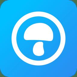 蘑菇伙伴app
