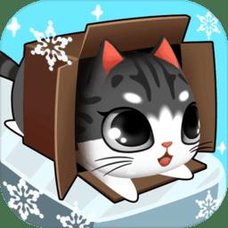 盒子里的猫游戏