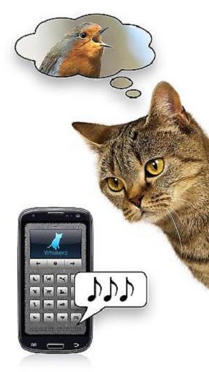 人猫交流器最新版 v1.0.0 安卓版 图2