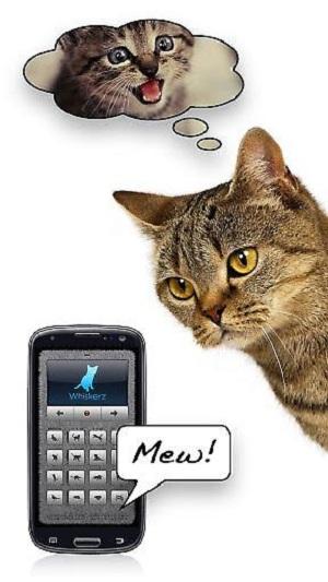 人猫交流器软件下载