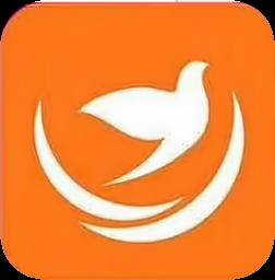 喜鹊网app