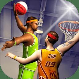 狂热的职业篮球明星中文版