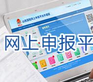山西国税网上申报系统